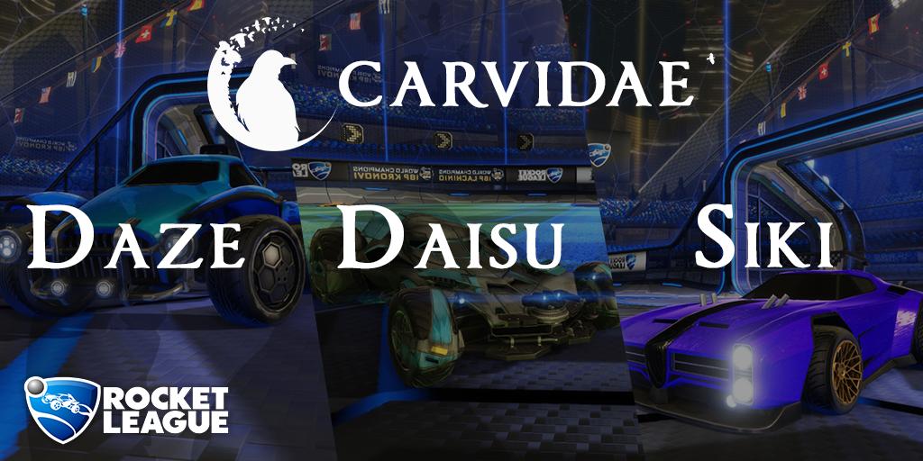 carvidae