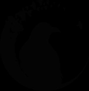 Corvidae black