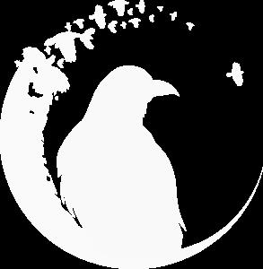 Corvidae white